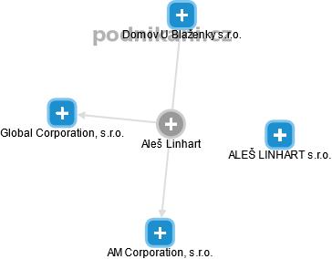 Aleš Linhart - Obrázek vztahů v obchodním rejstříku