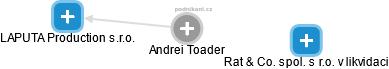 Andrei Toader - Obrázek vztahů v obchodním rejstříku