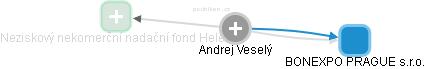 Andrej Veselý - Obrázek vztahů v obchodním rejstříku