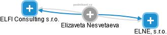 Elizaveta Nesvetaeva - Obrázek vztahů v obchodním rejstříku