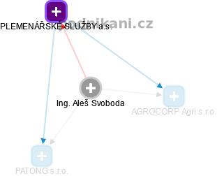 Aleš Svoboda - Obrázek vztahů v obchodním rejstříku