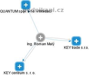 Roman Malý - Obrázek vztahů v obchodním rejstříku