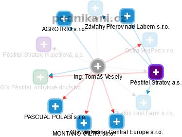 Tomáš Veselý - Obrázek vztahů v obchodním rejstříku