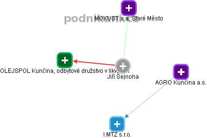 Jiří Šejnoha - Obrázek vztahů v obchodním rejstříku