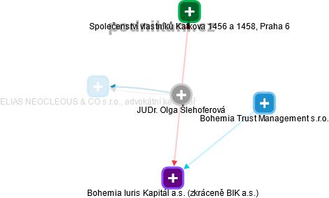 Olga Šlehoferová - Obrázek vztahů v obchodním rejstříku