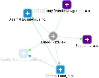 Luboš Řežábek - Obrázek vztahů v obchodním rejstříku