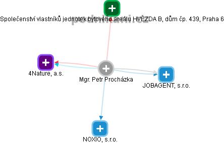 Petr Procházka - Obrázek vztahů v obchodním rejstříku