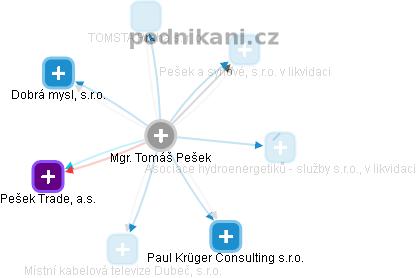 Tomáš Pešek - Obrázek vztahů v obchodním rejstříku