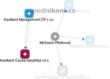 Michaela Pfeiferová - Obrázek vztahů v obchodním rejstříku