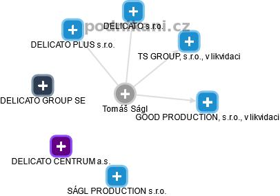 Tomáš Ságl - Obrázek vztahů v obchodním rejstříku