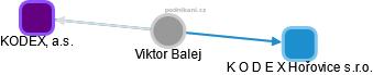 Viktor Balej - Obrázek vztahů v obchodním rejstříku