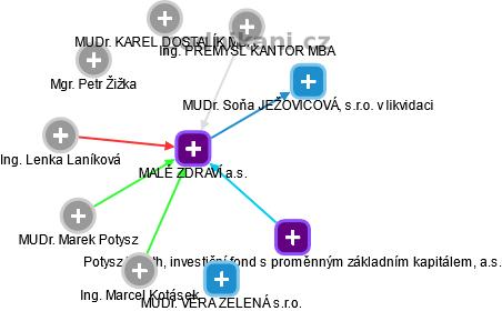 MALÉ ZDRAVÍ a.s. - obrázek vizuálního zobrazení vztahů obchodního rejstříku