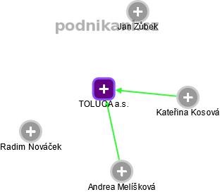 TOLUCA a.s. - náhled vizuálního zobrazení vztahů obchodního rejstříku