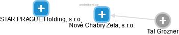 Nové Chabry Zeta, s.r.o. - náhled vizuálního zobrazení vztahů obchodního rejstříku