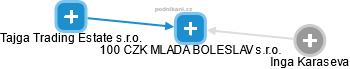 100 CZK MLADA BOLESLAV s.r.o. - náhled vizuálního zobrazení vztahů obchodního rejstříku