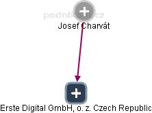 Erste Group IT International GmbH, o. z. Czech Republic - náhled vizuálního zobrazení vztahů obchodního rejstříku