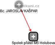 Spolek přátel MŠ Holubova - náhled vizuálního zobrazení vztahů obchodního rejstříku