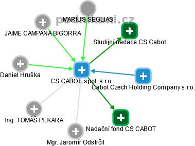 CS CABOT, spol. s r.o. - náhled vizuálního zobrazení vztahů obchodního rejstříku