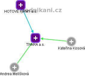 TIVARA a.s. - náhled vizuálního zobrazení vztahů obchodního rejstříku