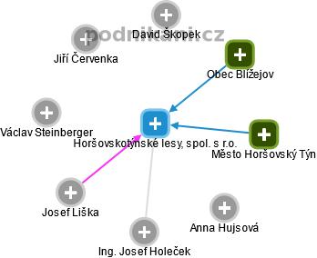 Horšovskotýnské lesy, spol. s r.o. - náhled vizuálního zobrazení vztahů obchodního rejstříku