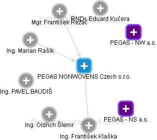 PEGAS NONWOVENS Czech s.r.o. - náhled vizuálního zobrazení vztahů obchodního rejstříku