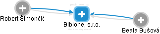 Bibione, s.r.o. - náhled vizuálního zobrazení vztahů obchodního rejstříku