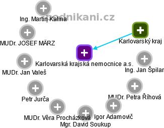 Karlovarská krajská nemocnice a.s. - náhled vizuálního zobrazení vztahů obchodního rejstříku
