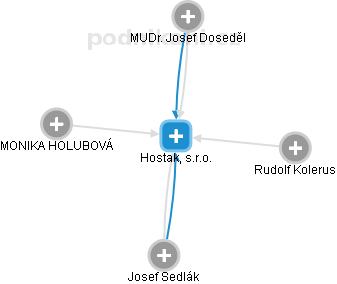 Hostak, s.r.o. - náhled vizuálního zobrazení vztahů obchodního rejstříku