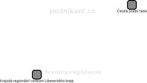 Česká účetní rada - náhled vizuálního zobrazení vztahů obchodního rejstříku