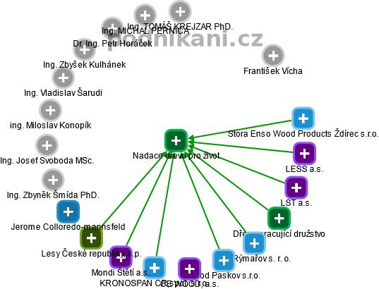 Nadace dřevo pro život - náhled vizuálního zobrazení vztahů obchodního rejstříku