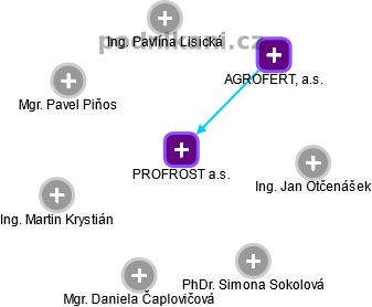 PROFROST a.s. - náhled vizuálního zobrazení vztahů obchodního rejstříku
