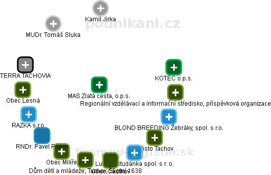 MAS Zlatá cesta, o.p.s. - náhled vizuálního zobrazení vztahů obchodního rejstříku