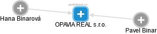 OPAVIA REAL s.r.o. - náhled vizuálního zobrazení vztahů obchodního rejstříku