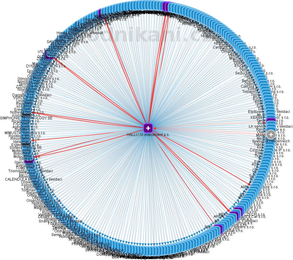 HALLU GI investment a.s. - obrázek vizuálního zobrazení vztahů obchodního rejstříku