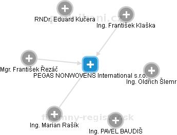 PEGAS NONWOVENS International s.r.o. - náhled vizuálního zobrazení vztahů obchodního rejstříku