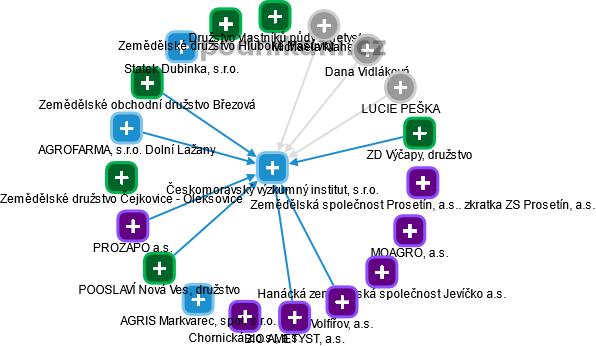 Českomoravský výzkumný institut, s.r.o. - náhled vizuálního zobrazení vztahů obchodního rejstříku