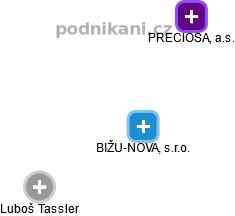 BIŽU-NOVA, s.r.o. - náhled vizuálního zobrazení vztahů obchodního rejstříku