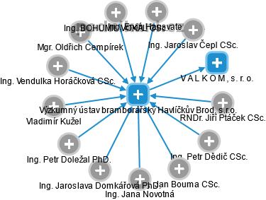 Výzkumný ústav bramborářský Havlíčkův Brod, s.r.o. - náhled vizuálního zobrazení vztahů obchodního rejstříku